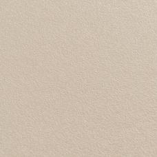 Стеновые панели CLICWALL U127-CST Бежевый теплый 2785*618*10 мм
